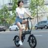 FIIDO D2S Folding Electric Moped Bike - Gray