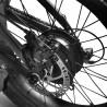 FIIDO M1 ElectricMountain Bike - Black